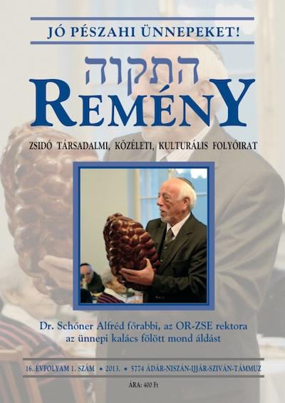 remeny-2013-1